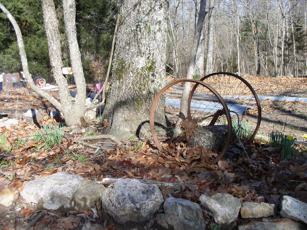 Check This Out Yard Decor Antique