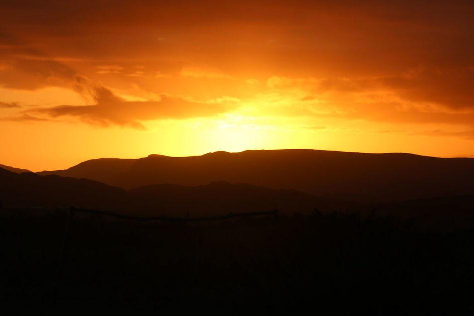 Peaceful Farm Setting Baardskeerdersbos Tranquility Outdoors Good Night Sunset Orange Orange Color