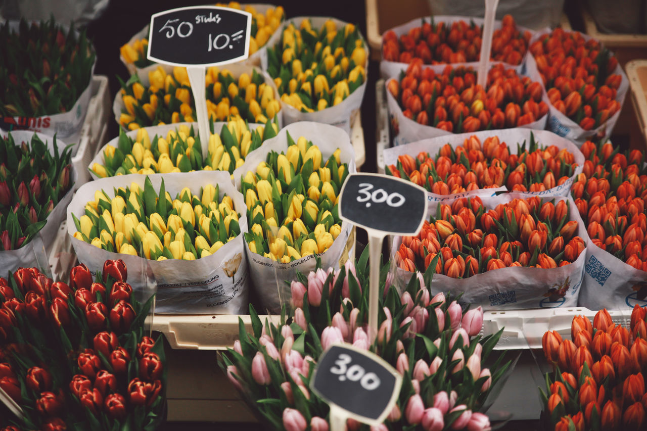 2016 Abundance April Arrangement Choice Display For Sale Freshness Market Market Stall Multi Colored No People Price Tag Retail  Sale Shop Small Business Spring Store Tulips Variation Your Amsterdam The Shop Around The Corner Colour Of Life EyeEm X Google - Your Amsterdam
