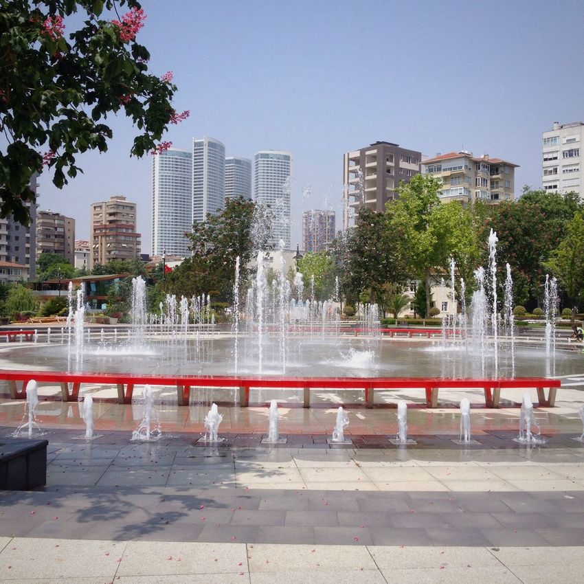 Hello World Istanbul Populer Photos Eye4photography  First Eyeem Photo Hugging A Tree Water_collection Göztepe