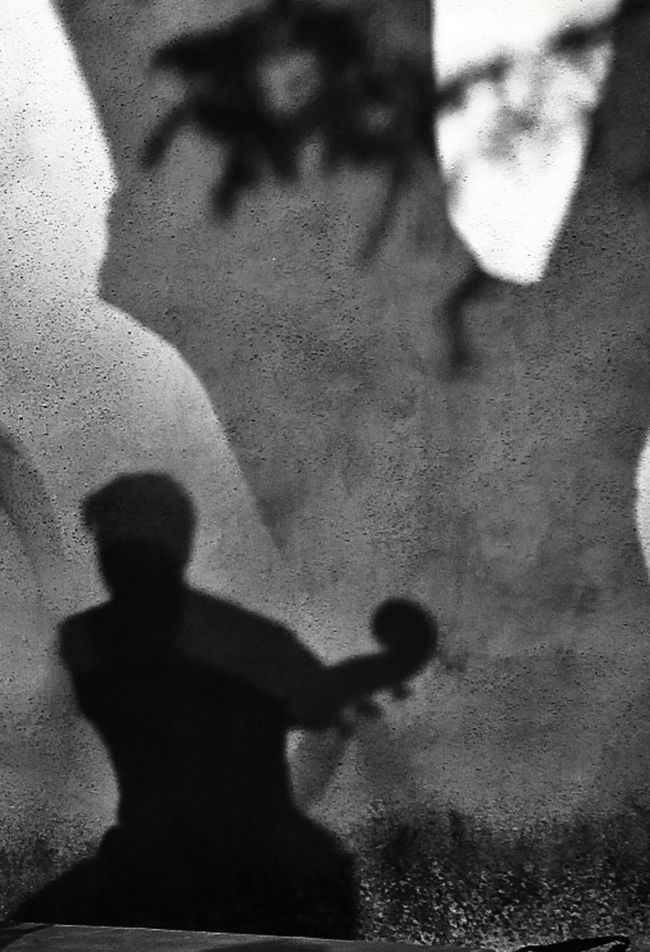 Behind the scenes at an outdoor concert Bass Player Close-up Contrabass Day Focus On Shadow Human Body Part Human Hand Indoors  Lifestyles Men One Person People Real People Shadow Shadows Of Trees Silhouette Standing Sunlight EyeEmNewHere Art Is Everywhere The Street Photographer - 2017 EyeEm Awards