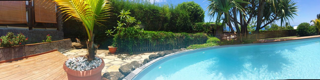 Swiming at Reunion Island🌴🤘🏼 Paradise! Relaxing Summer ☀