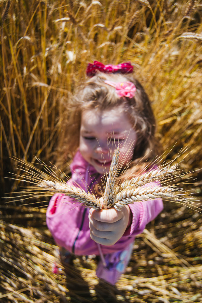 High Angle View Of Girl Showing Wheat Crop