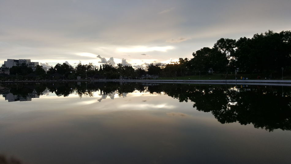 Reflection Lake Tree Water Cloud - Sky Nature Sky No People Outdoors Cloudy Beauty In Nature Evening Sunset Outdoor Park Pond Scene Relax