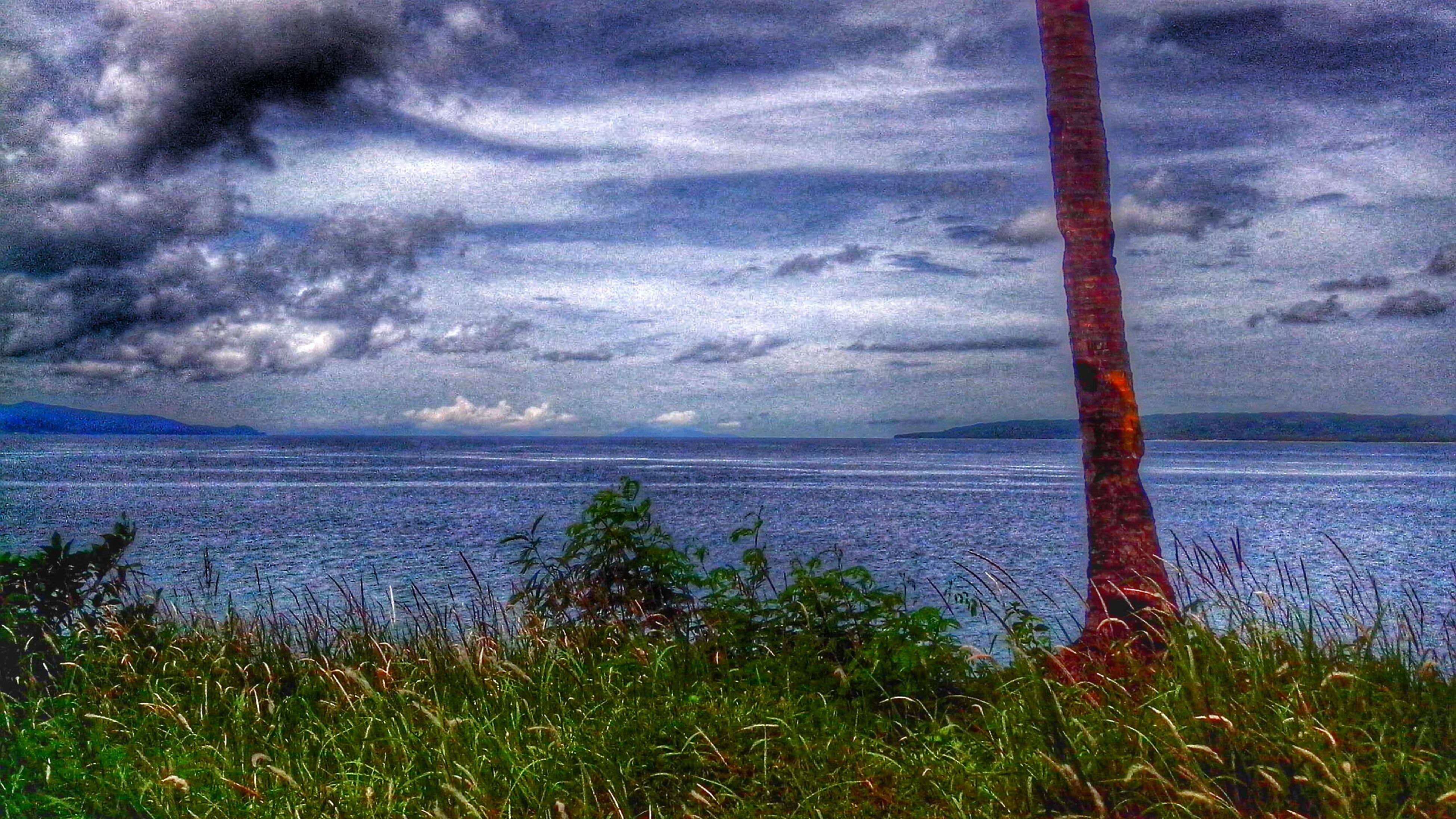 water, sea, horizon over water, tranquil scene, sky, tranquility, scenics, beauty in nature, nature, cloud - sky, grass, growth, cloudy, plant, idyllic, beach, cloud, shore, remote, non-urban scene