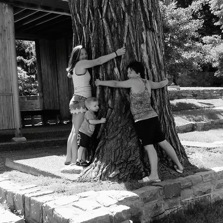 SundayFunday My Loves❤ My Minions My Everything ❤ Sioux Falls Japanese Garden Summer ☀