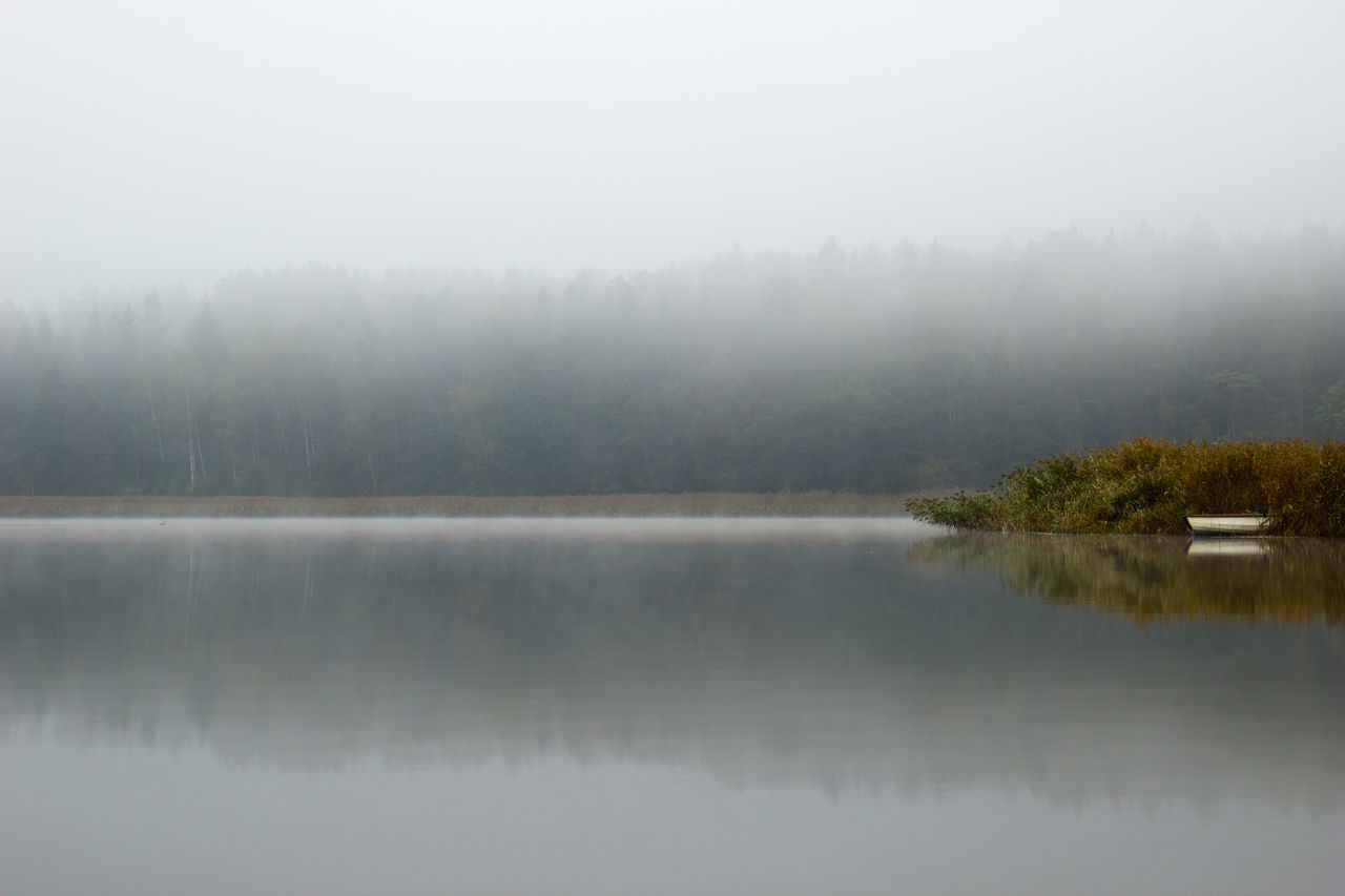 Beautiful stock photos of river, Day, Fog, Forest, Lake