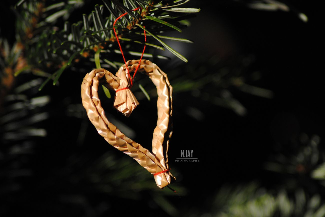 Christmas Christmas Tree Christmas Decoration Xmas Xmas Decorations Xmas Tree Xmas Time Heart Heart Shape Tree Fir Branch Close-up Holiday - Event Eye4photography  EyeEm Masterclass Merry Christmas Happy Holidays! Hanging Christmas Ornament Close Up Needle - Plant Part Nature Streamzoofamily Xmas🎄