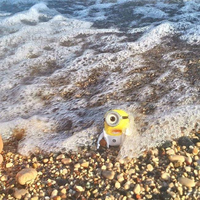миньон миньоннаотдыхе миньоныпутешествуют спасите ааа Море унесенныеволнами волны морскаяпена турция Asuspadfones Rixospremiumtekirova Rixos Rixostekirova Turkey Antalya Kemer Minion  Helpme Sea Beach лето 2015
