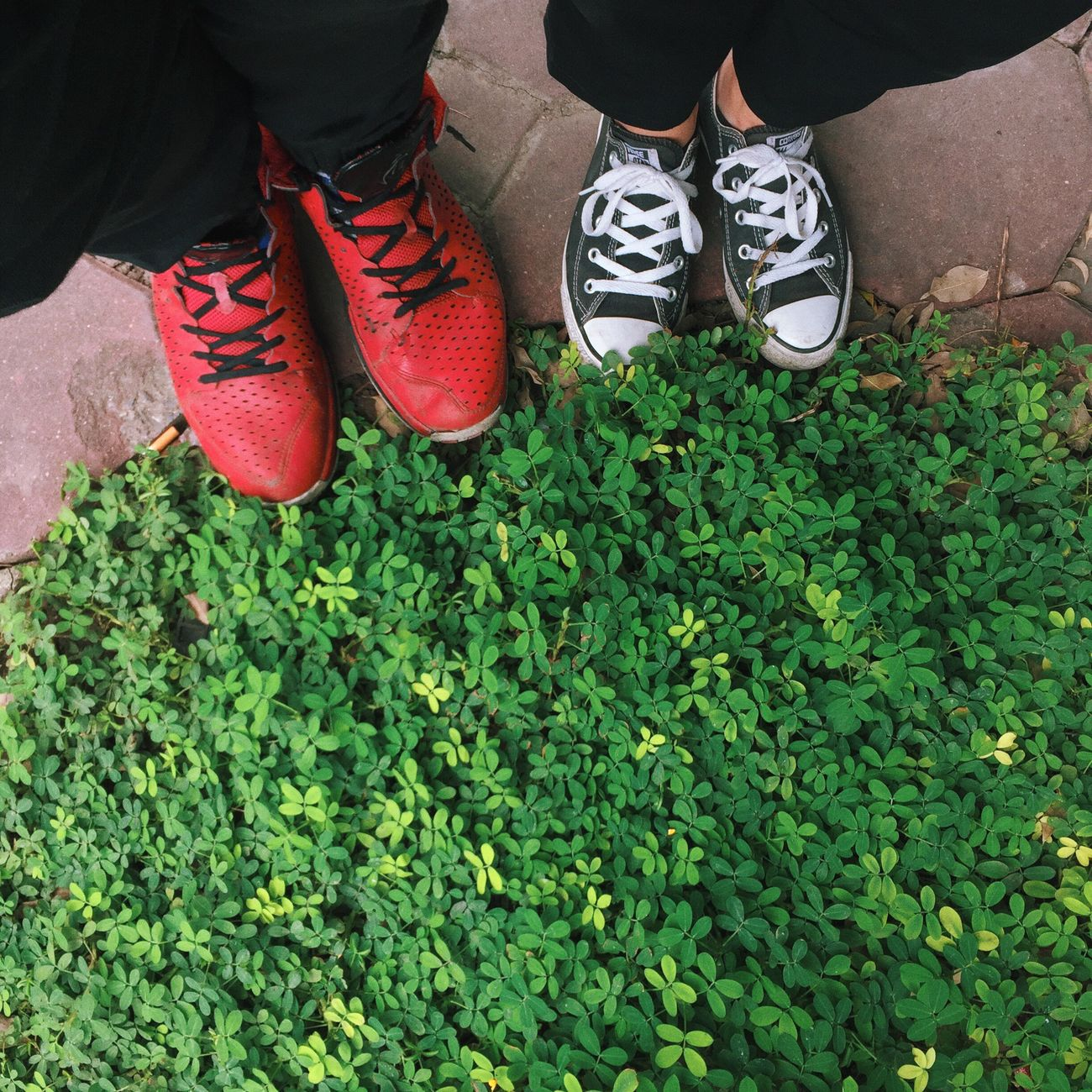 us Us Date Shoes Love MyLove❤ Him Green Standing Human Foot Day Outdoors