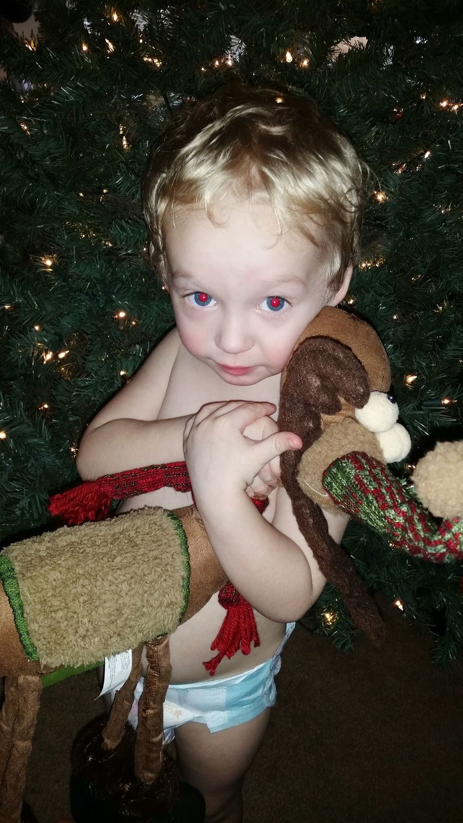 Taking Photos Enjoying Life Cheese! Hello World Check This Out EyeEm Gallery Showcase: December Holiday Reindeer Hugs Christmas United States Portrait Of A Toddler Love Little Boy December Pennsylvania Christmas Time My Winter Favorites Best Christmas Lights