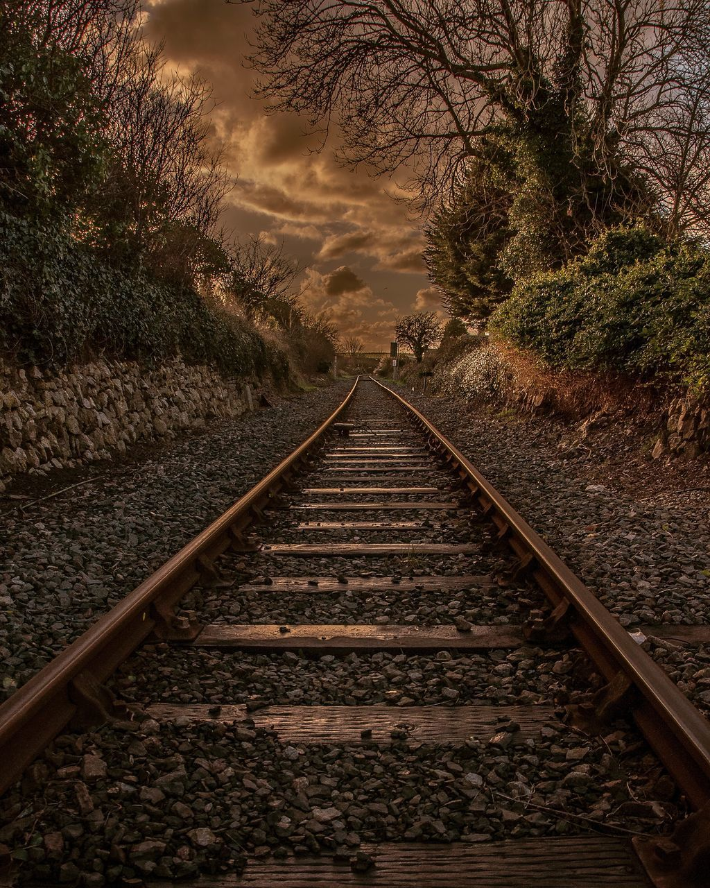 railroad track, rail transportation, transportation, diminishing perspective, the way forward, tree, railroad tie, no people, nature, railway track, straight, outdoors, tranquility, day, beauty in nature, scenics, sky