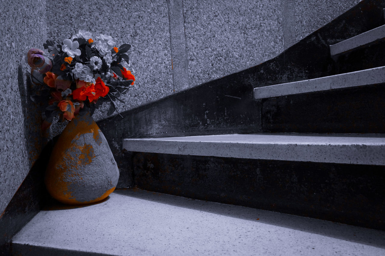On my way up 🌸 🌹 🌻 Flowers On The Road Colorsplash Selective Color Shades Of Grey Shades Of Red Flower Flowers Scenic View Scenery Lieblingsteil ورود ورد زهر ازهار Findings On The Road Stairs All The Way Up Minimalist Minimalism Minimal Mobilephotography Shootermag AMPt_community Vscocam