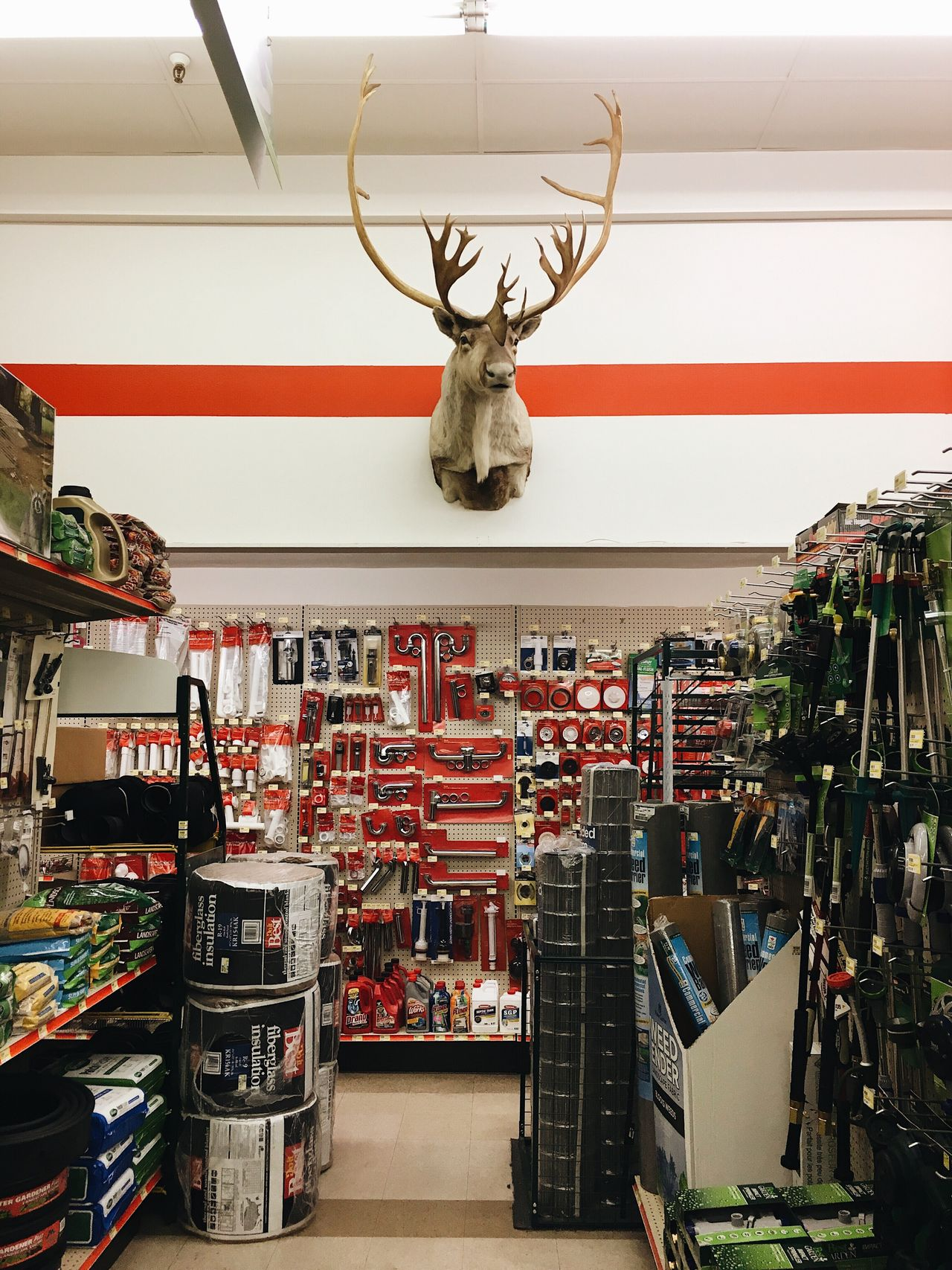 after the car show, we stopped by the local hardware shop. #antlerseverywhere Heber City