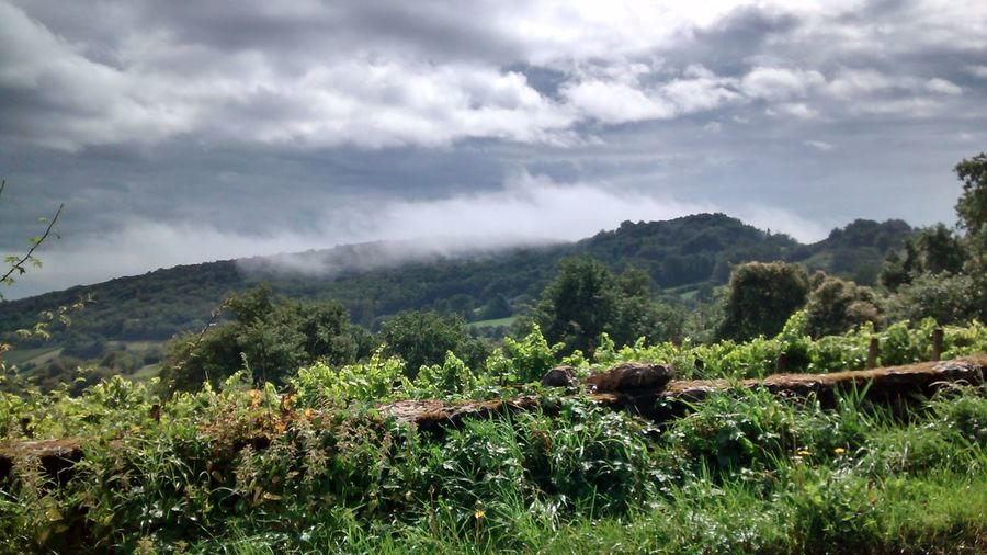 Mont Pouilly dans le nuage Nature Clouds And Sky Vineyard Clouds
