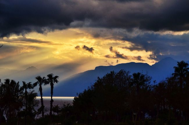 Before the storm... Hello World Colors Tadaa Community Nature Sky Beach Clouds And Sky Storm Palm Trees Sunset
