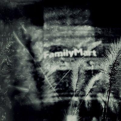 Familymart Enjoying Life Grass 野草ハンター ^_^