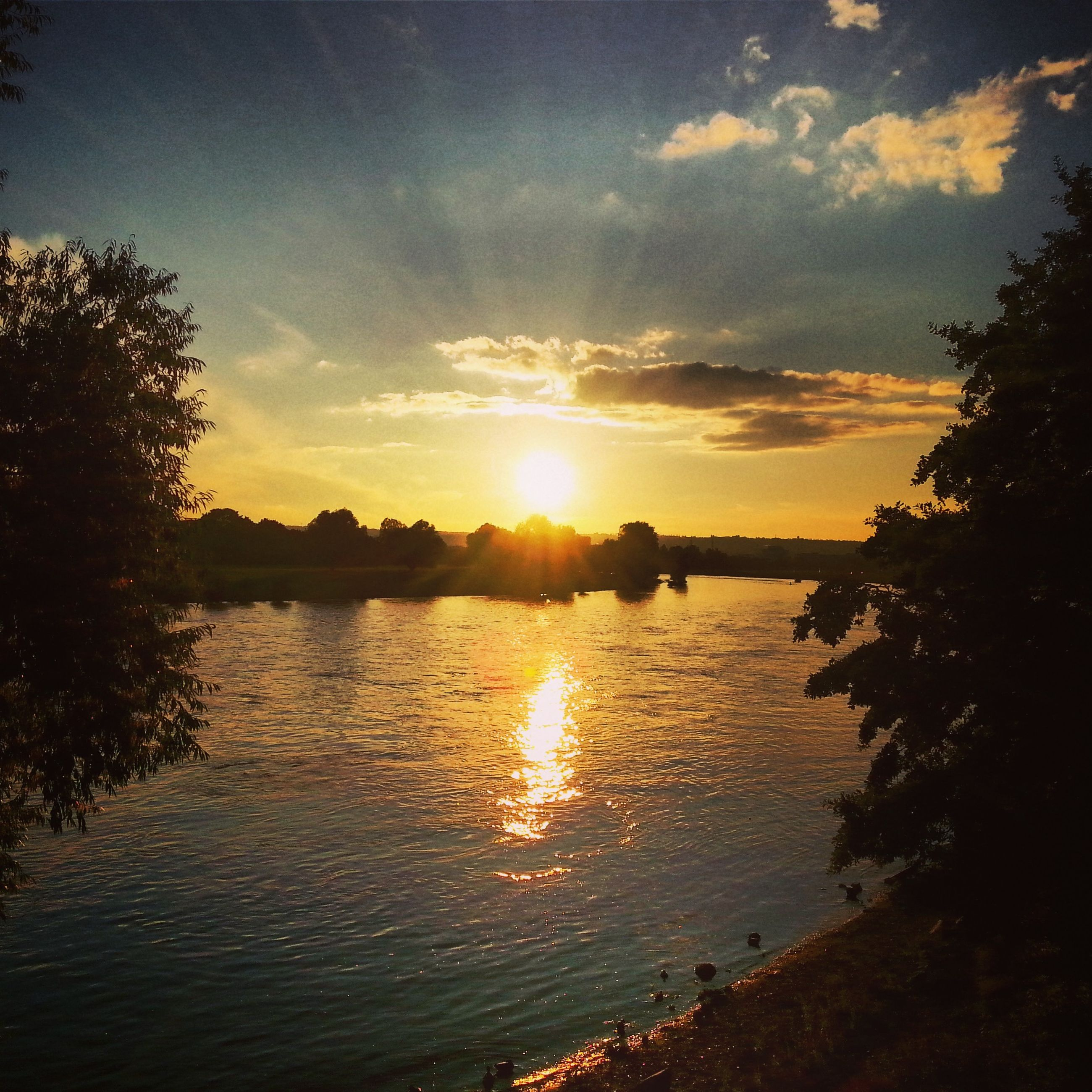 sunset, sun, water, sky, tranquil scene, scenics, tranquility, reflection, beauty in nature, silhouette, sunlight, nature, cloud - sky, lake, tree, idyllic, sunbeam, orange color, river, lens flare