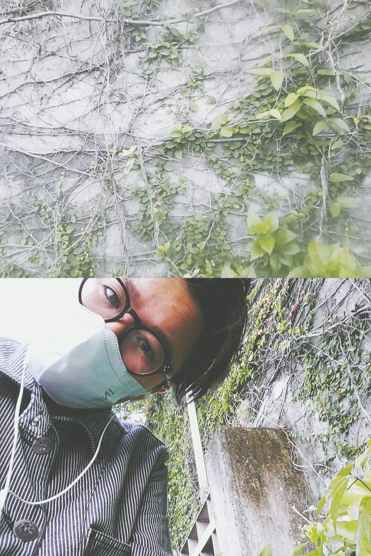 成為牆壁打破懶惰心牆。