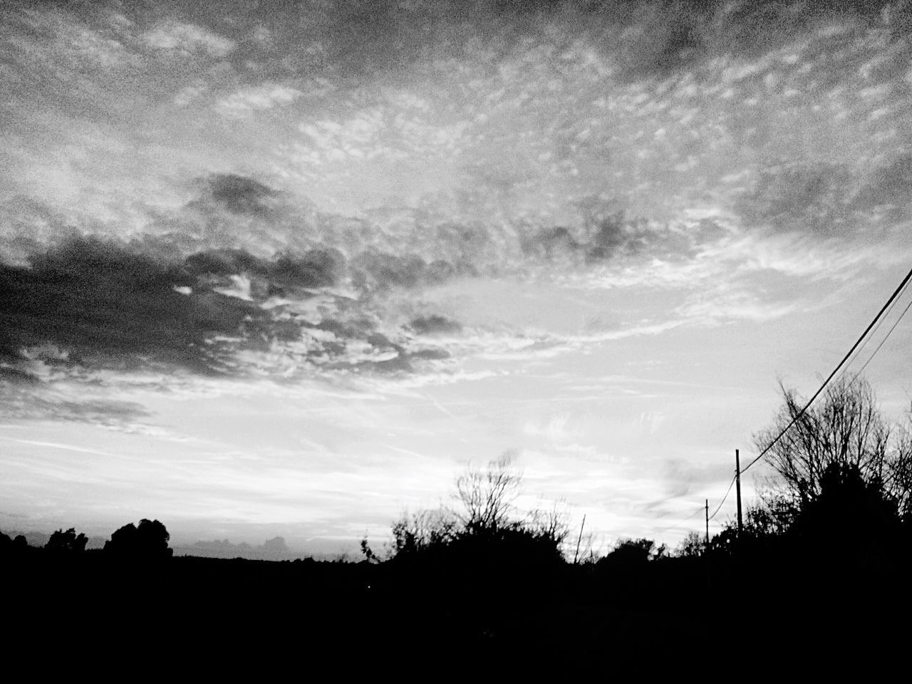 Winter Silhouette Tree Sky Nature Tranquility Scenics No People Outdoors Cloud - Sky Beauty In Nature Tranquil Scene Sunset Day Street Photography Streetphotography Streetphoto_bw Blackandwhite Black And White Black & White Rome Italy Monochrome Monochrome Photography EyeEm Best Shots Popular Photos