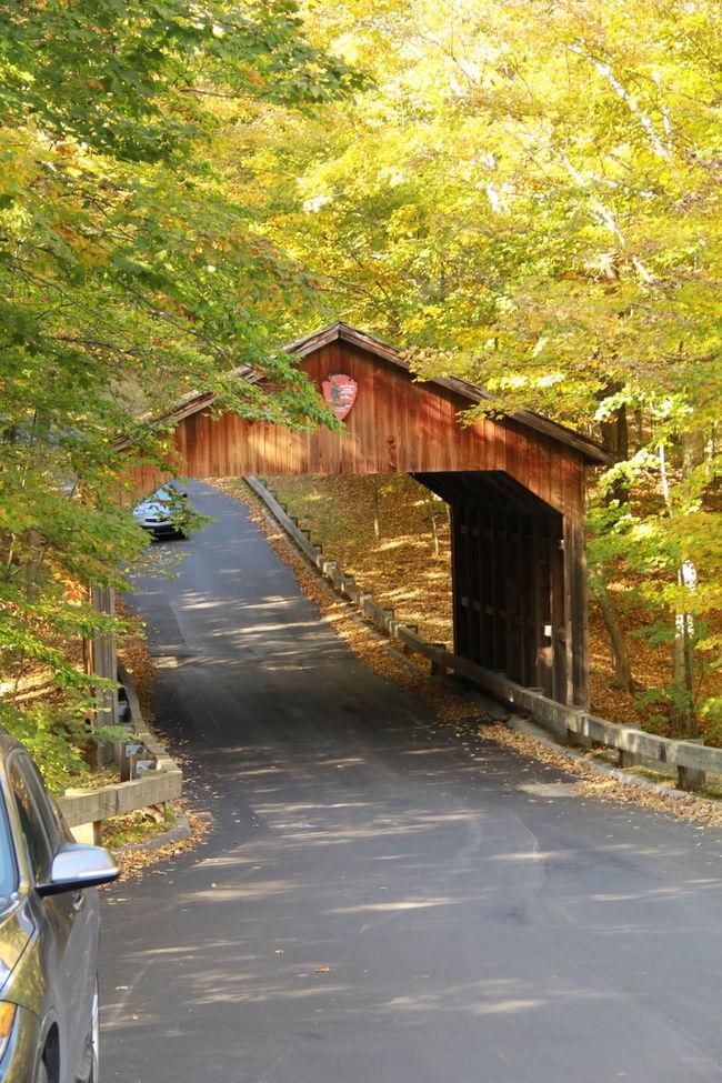 Fall Autumn Leaves Hikingadventures Michigan