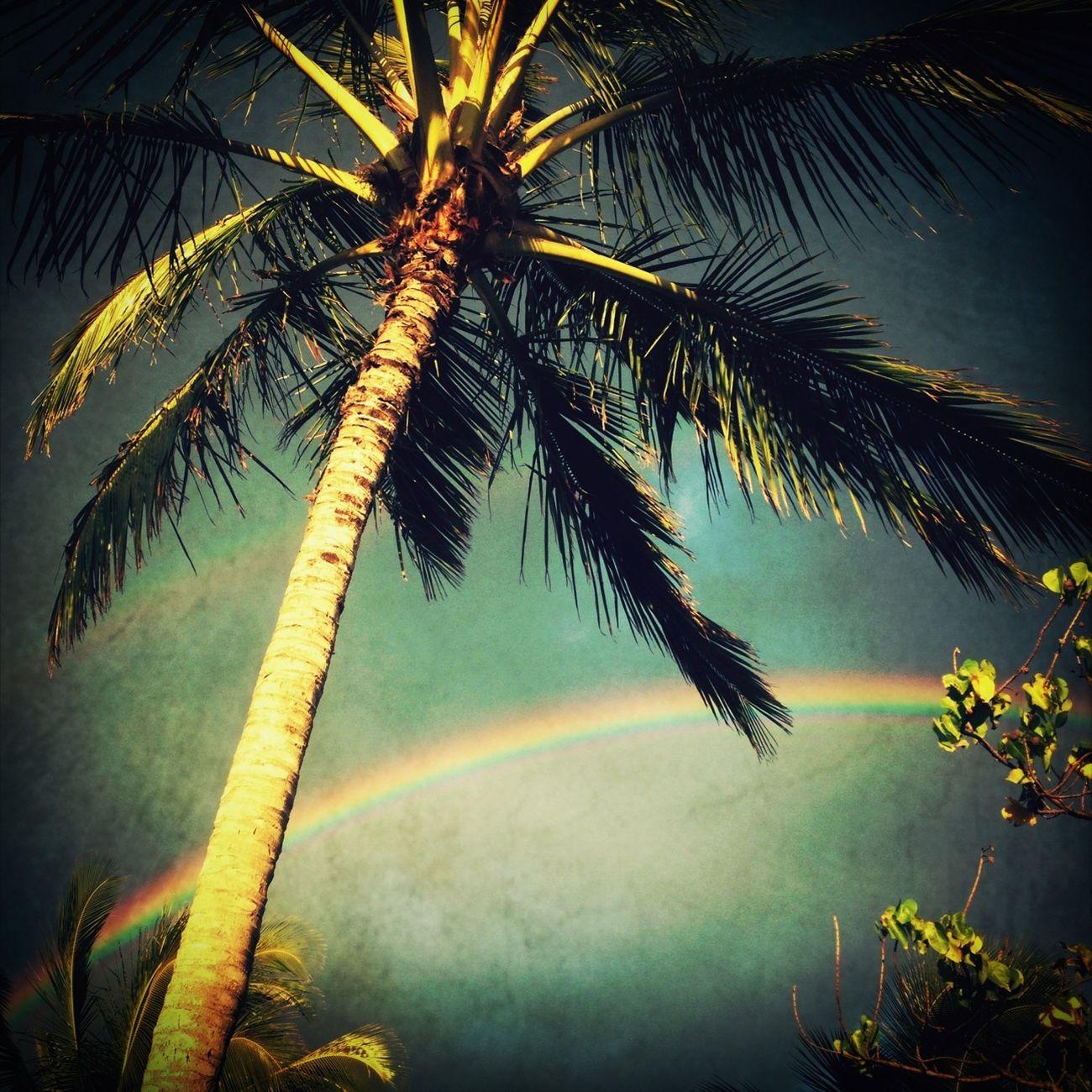 Rainbow Everyday Life WeatherPro: Your Perfect Weather Shot
