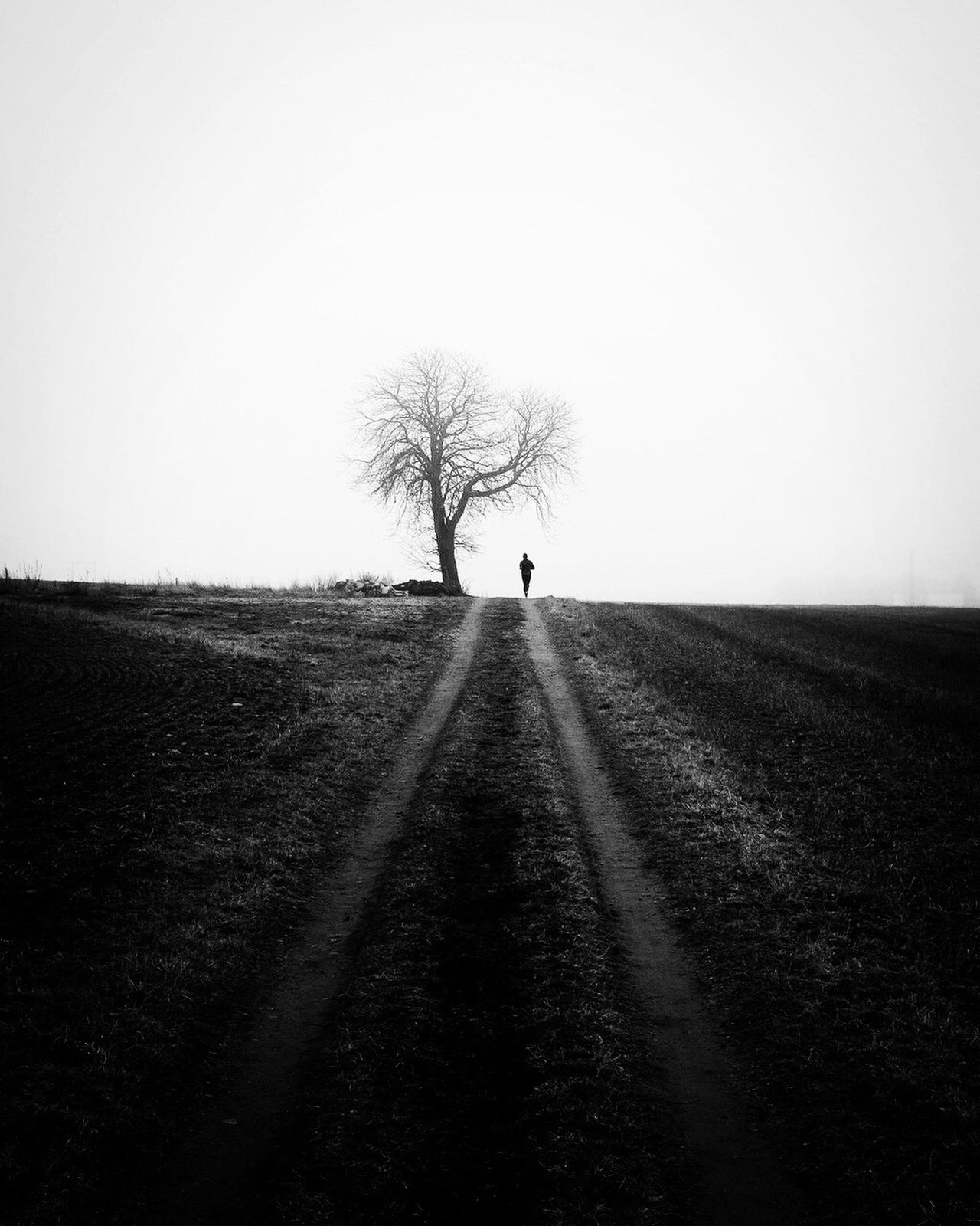 Nature Tree Tranquil Scene Outdoors Beauty In Nature Landscape Black And White Street Photography Tranquility Silhouette Monochrome Bw_collection One Person Tree Field