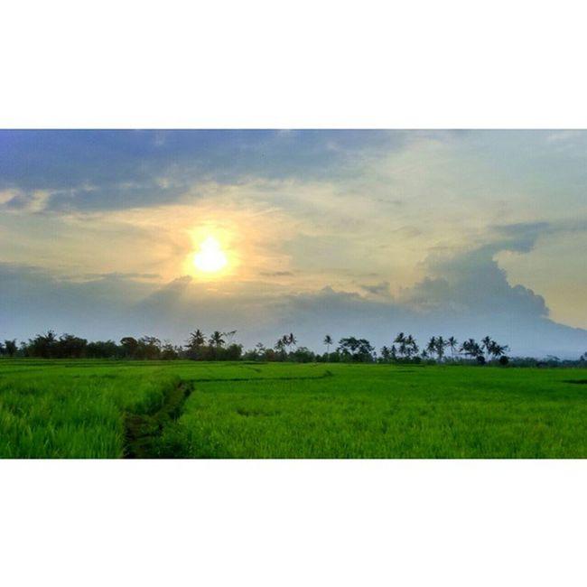 Home is... Sunset Vscocam Vscosunset Vscobdg instasunda kamerahpgw jalan2terus exploregarut explore iphonesia negerisejutasunset vacation vsco vscocam jalan2terus sky backpacker travelgram backpacker journey indonesiaonly describeIndonesia