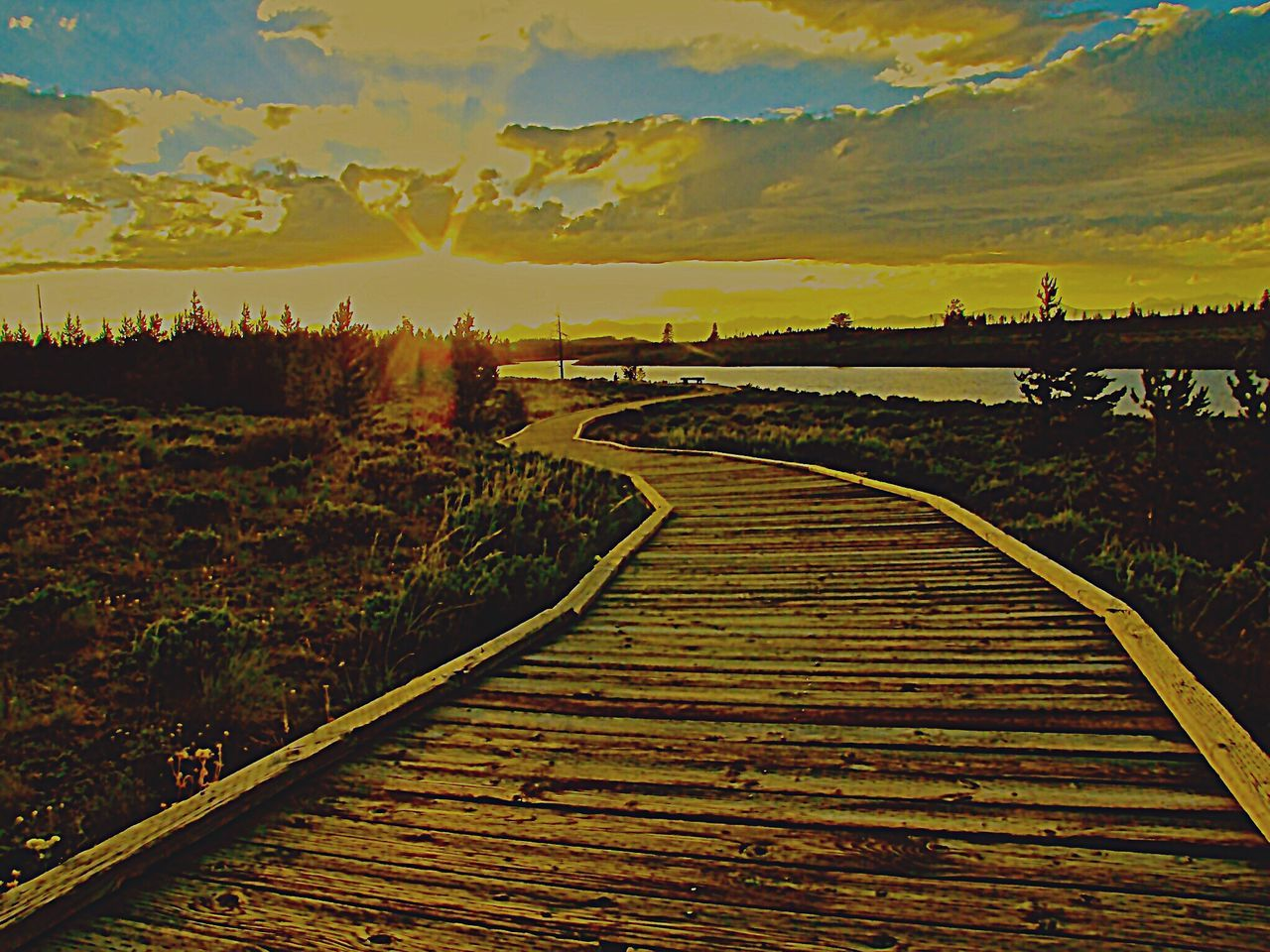 43 Golden Moments Golden Sunset Gold Relecrion Golden Lights Wooden Pathway