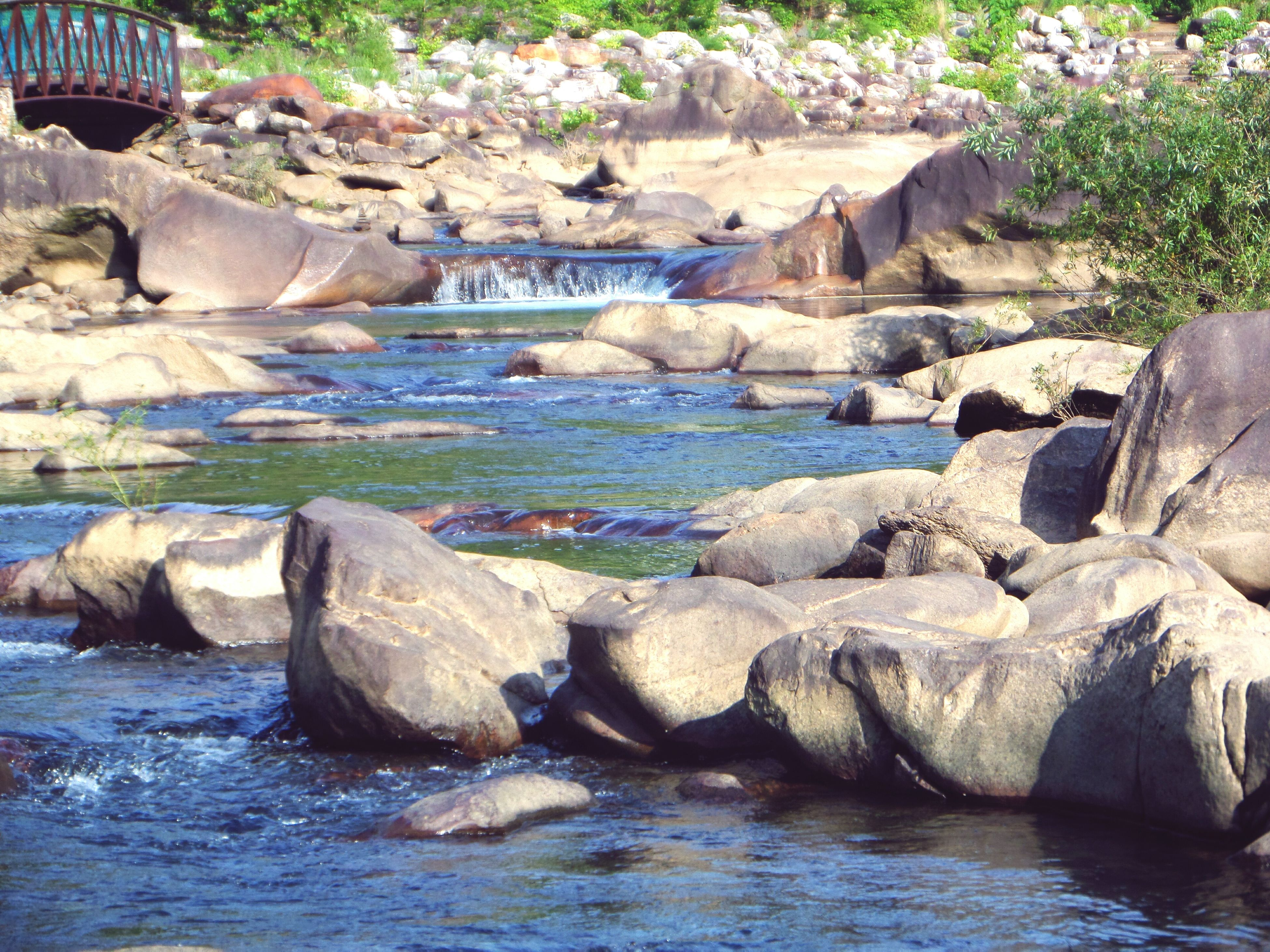 rock - object, nature, water, day, beauty in nature, sunlight, tranquility, no people, outdoors, river, scenics, animal themes