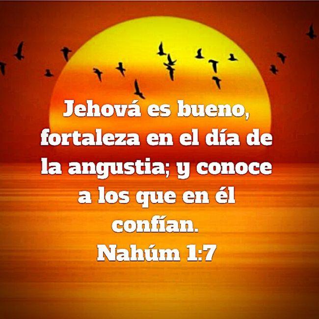 La Biblia Biblia Nahum 1:7 el es mi fortaleza en tiempos de angustia, en el encuentro paz y gozo mi complemento! Gracias Dios por tu fidelidad y porque me sostenes!