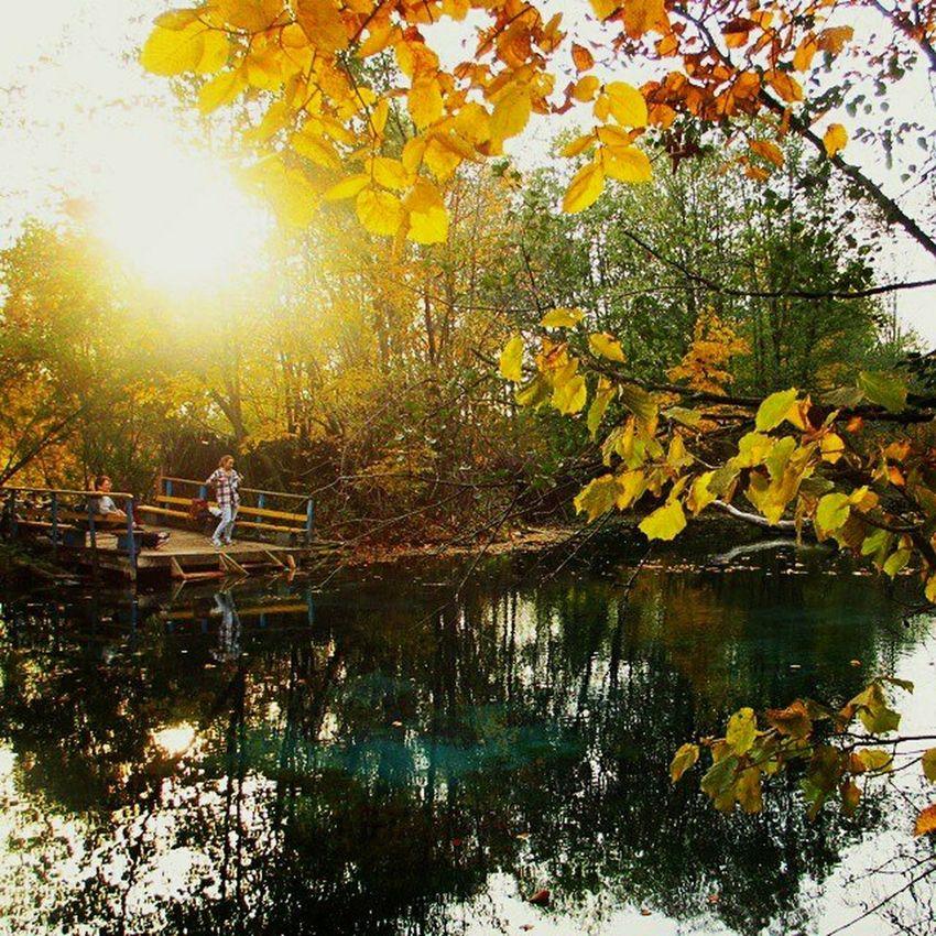 Bluelake голубоеозеро Autumn Природа Autumn Colors осень Nature Lake Leaves золотаяосень Goldenautumn Goldenleaves отдых природароссии