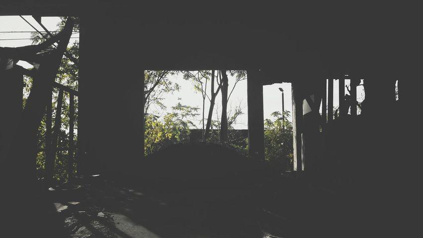 Nature Vs Concrete Nature On Your Doorstep Abandoned Dwellings Creepypasta Taking Photos Eye4enchanting Hidingintheshadows