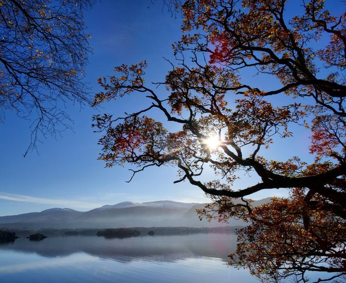 Killarney  Reflection Tree Nature Sky Sunset Outdoors No People Water Landscape Scenics Beauty In Nature Day Sunlight Irlande Killarney Ireland Killarney Lake Killarney National Park Killarney  Ireland Irland Tree Nature Mountain Calm Water