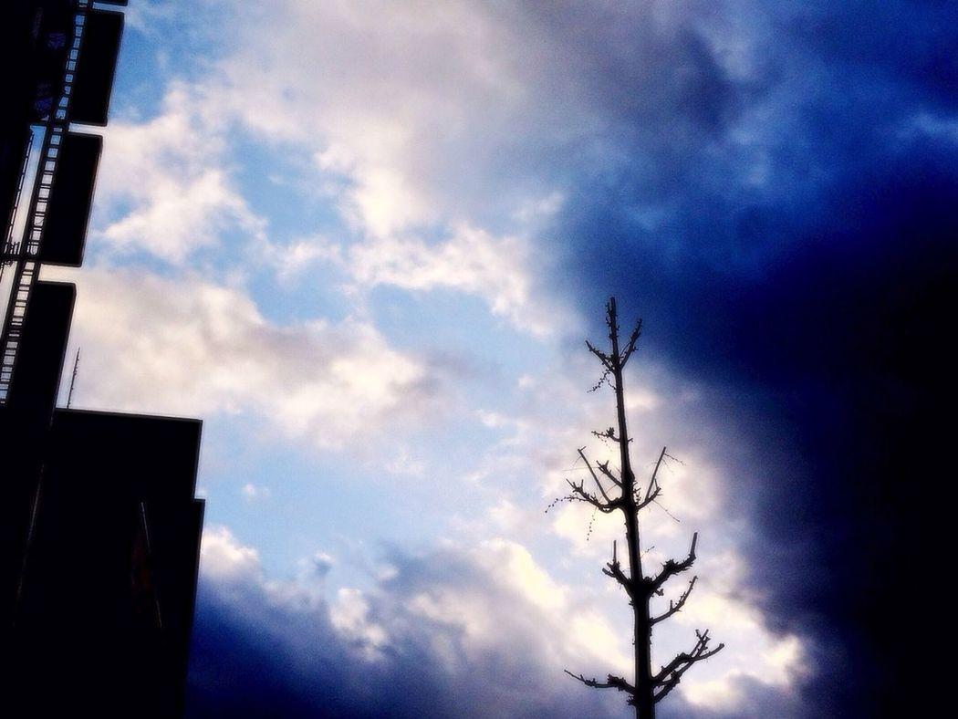 Sky Spring Storm