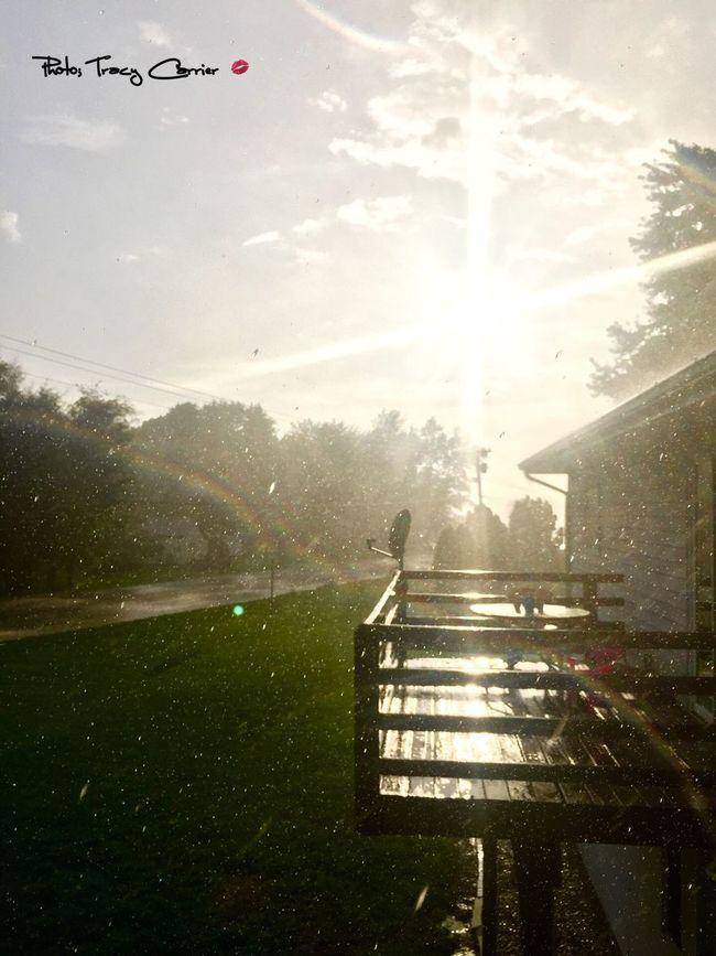 Tranquility Sun Raindrops Rain☔ Sunny☀ Beautiful Nature