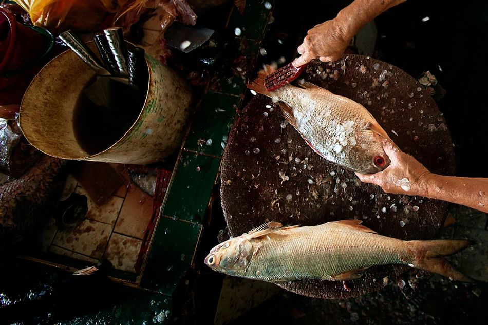 Hands At Work Work Life Wet Market Business ASIA Fish Malaysia Stockphoto