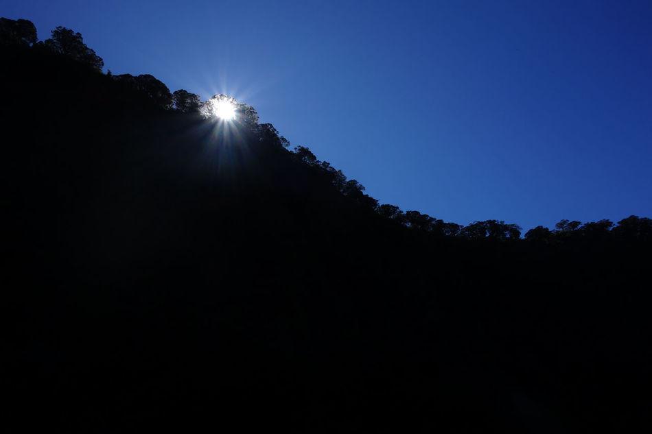 EyeEm Best Shots - Sunsets + Sunrise Sunrise_Collection Mt. Mandalagan Negros Island Philippines Negros Mountaineering Club Tree Northern Negros Natural Park Outdoors Wilderness Safari Eyeem Philippines Tropical Climate Negros Occidental
