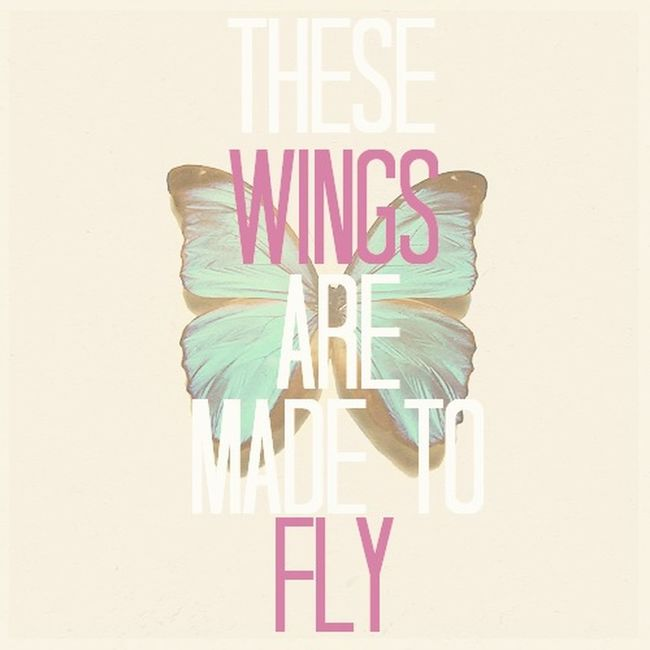 Little Mix  Wings