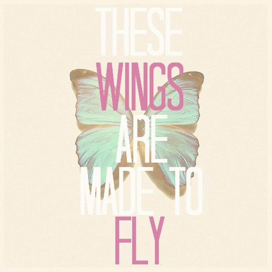 Little Mix  Wings