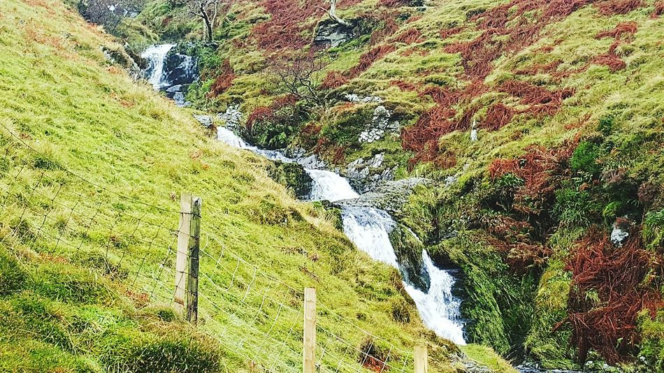 Hillscape Hill Views Autumn Colors Scotland Scenery Shots Water_collection Waterfall_collection Waterfalls Taking Photos Amazing View Enjoying Life Hillside Relaxing Elvingfoot Falls Elvington Autumn 2015 Autumn Beauty Scenery Enjoying The View Hill Side Views Wild In The Hills Hillview