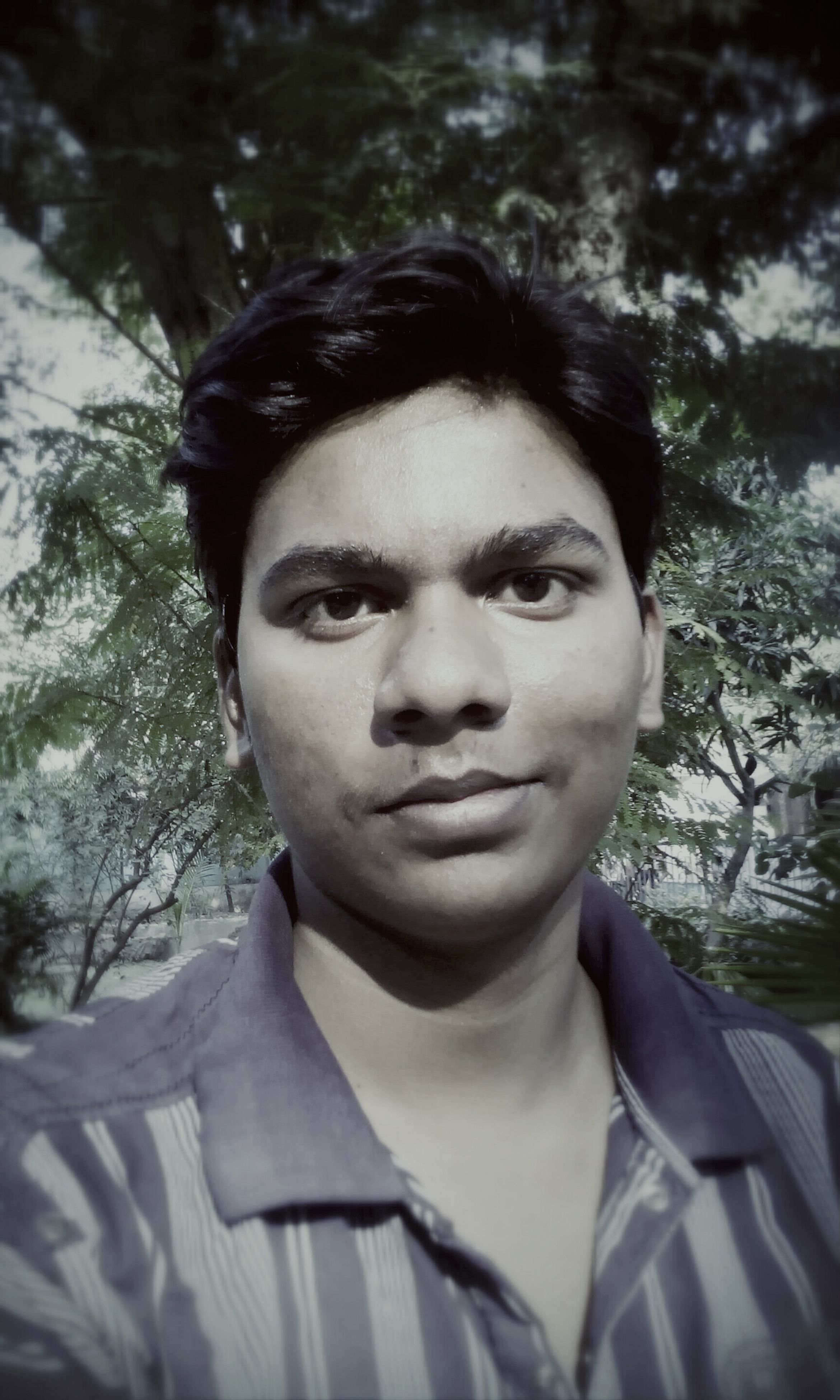 portrait, young adult, looking at camera, headshot, person, lifestyles, front view, young men, leisure activity, serious, close-up, focus on foreground, human face, tree, casual clothing, confidence, contemplation