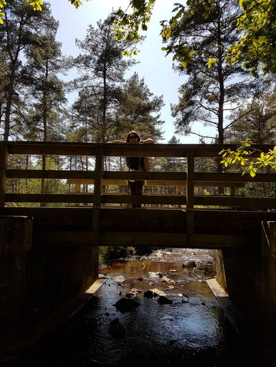 Under The Bridge New Forest Fritham Resting Sunnyglade Walking In The Woods