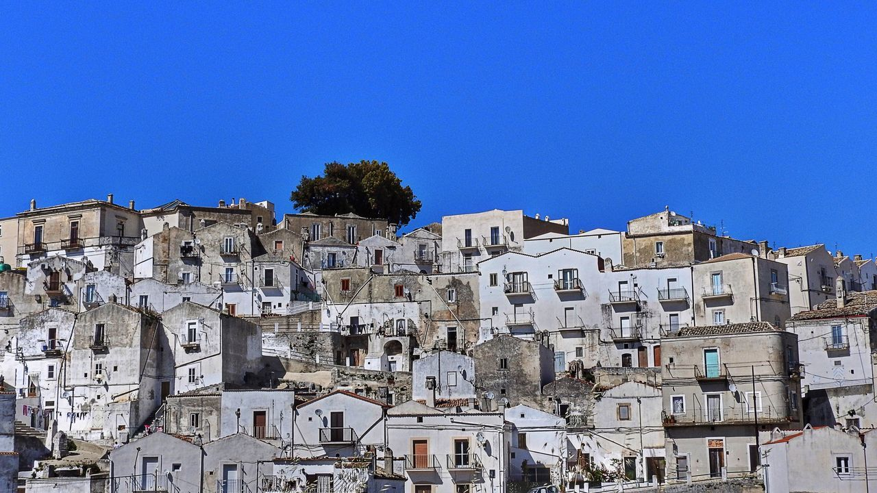 White houses of Monte Sant' Angelo, Gargano, Apulia White White House White Houses Blue Sky Blue Tree Single Tree Apúlia Italy Gargano Houses