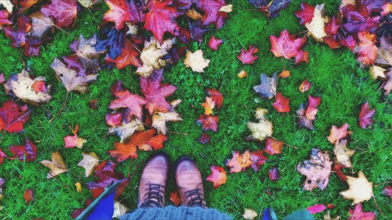 Multi Colored Personal Perspective Outdoors Nature Autumn Colors Authentic Moments Beauty In Nature Women Rainy Day Getting Inspired Colour Of Life Darkness And Light EyeEm Nature Lover Eye4photography Real People Beauty In Nature Front View