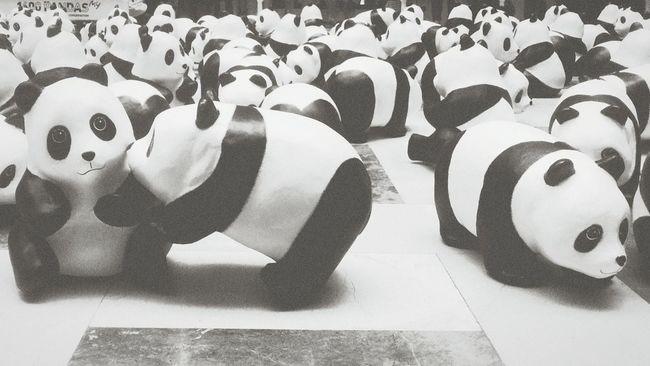 爱情是什么东西,只会让人悲伤。 Love Panda Emo Feeling Down