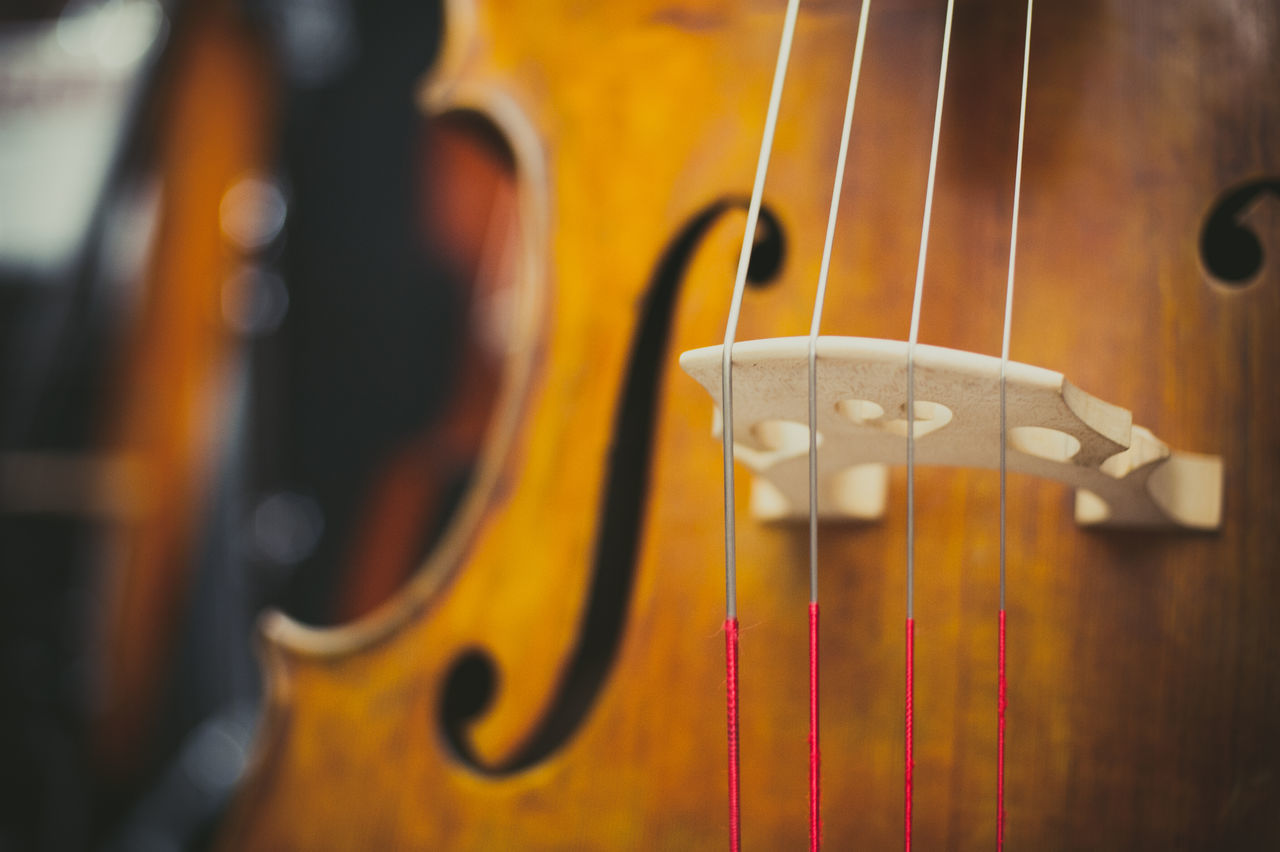 Beautiful stock photos of music,  Bass Instrument,  Brown,  Close-Up,  Double Bass