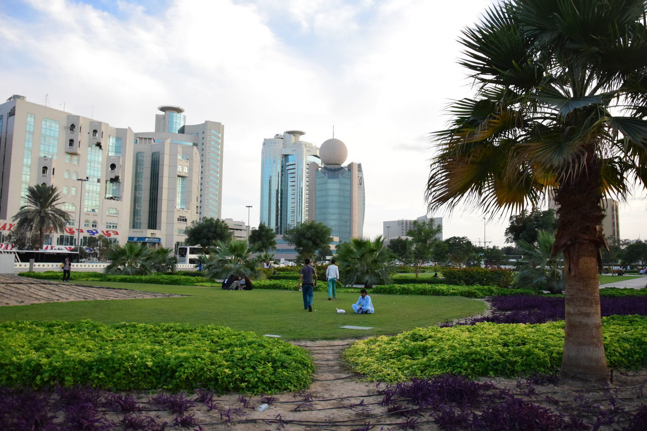 Today is a free day in Dubai City Dubai Dubaicity Dubai❤ Grass Green Color Leisure Activity Leisure In A Park Leisure In The City Leisure Time Leisure Time In Dubai Men Neighborhood Map Outdoors Park - Man Made Space Real People Real People, Real Lives Travel Destinations Tree