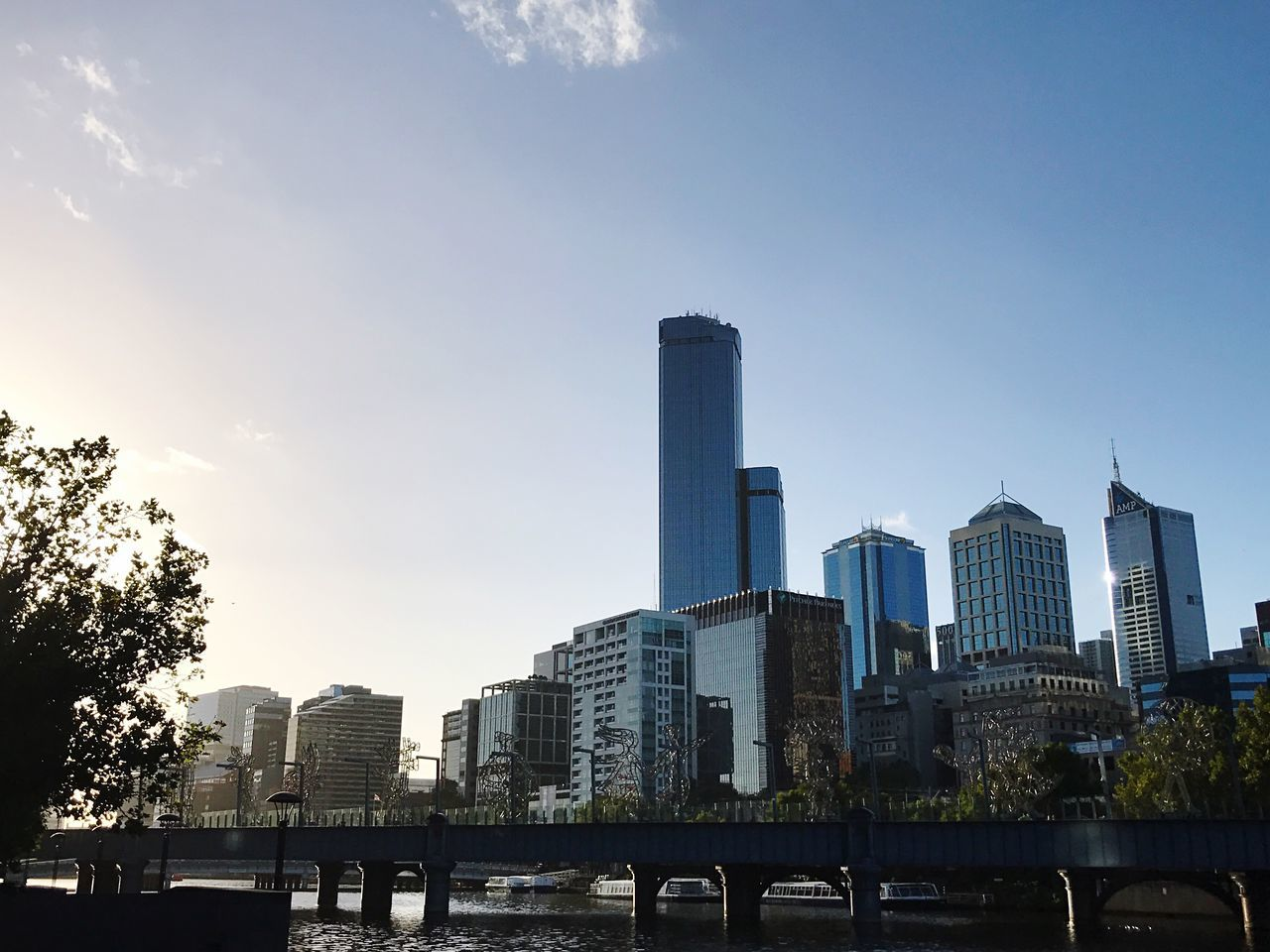 Adapted To The City | Melbourne Cityscape Shotoniphone7plus Urban Skyline