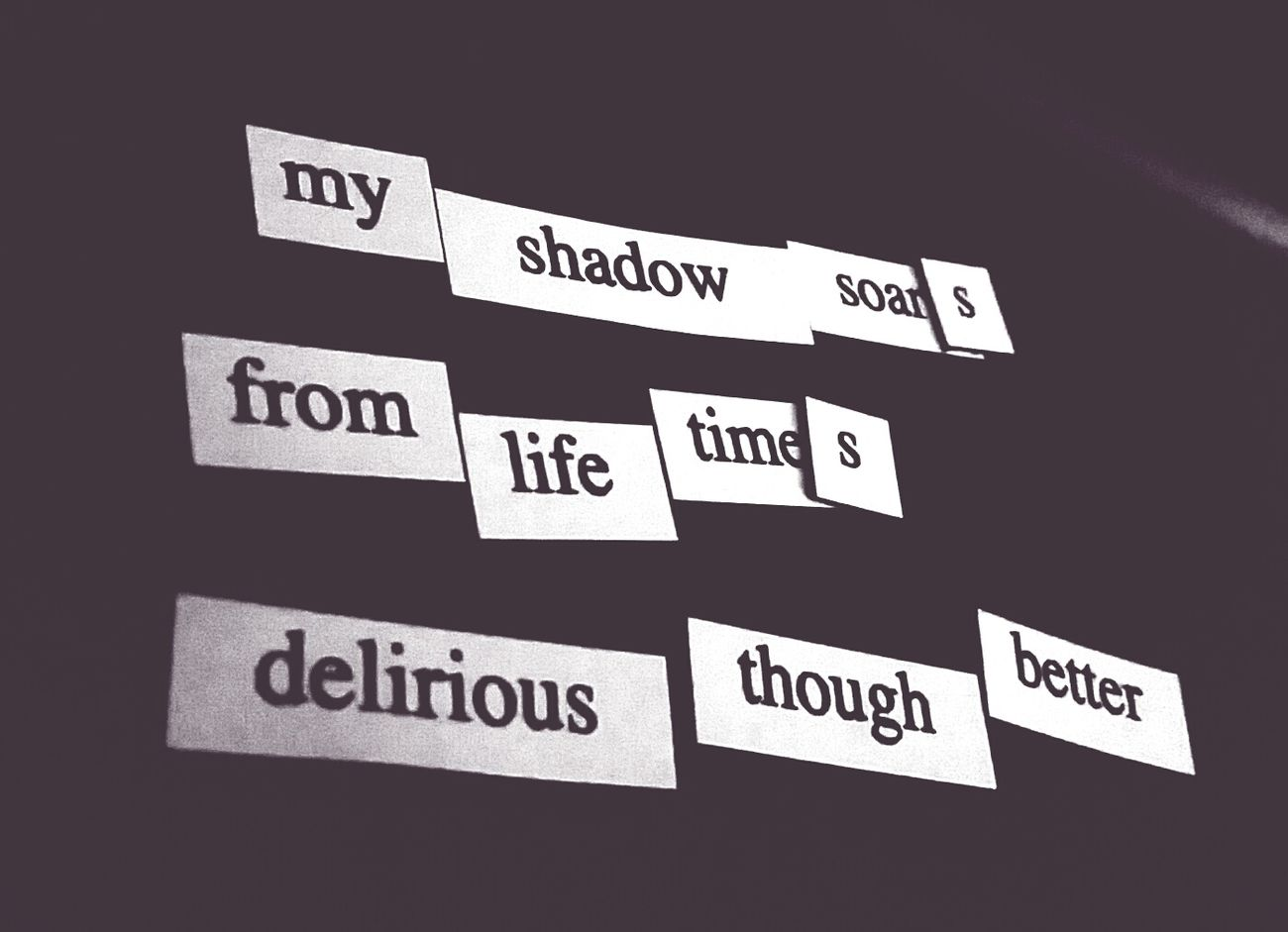 Magnet Poetry Poetry Delirious Shadow Fridge Poetry Black And White Hanging Out